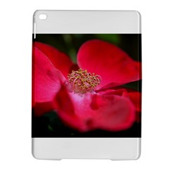 Bright Red Rose iPad Air 2 Hardshell Cases