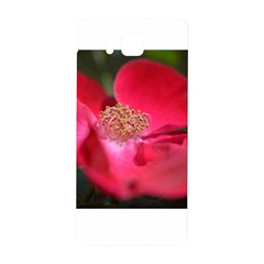 Bright Red Rose Samsung Galaxy Alpha Hardshell Back Case