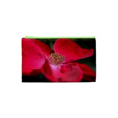 Bright Red Rose Cosmetic Bag (XS)