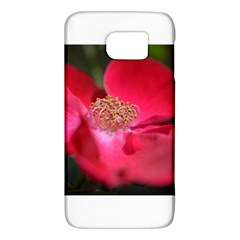 Bright Red Rose Galaxy S6