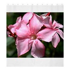 Pink Oleander Shower Curtain 66  x 72  (Large)