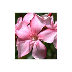Pink Oleander Shower Curtain 48  x 72  (Small)