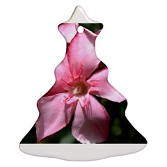 Pink Oleander Ornament (Christmas Tree)
