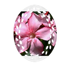 Pink Oleander Oval Filigree Ornament (2-Side)