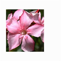 Pink Oleander Small Garden Flag (Two Sides)