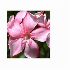 Pink Oleander Large Garden Flag (Two Sides)