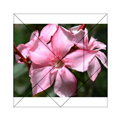 Pink Oleander Acrylic Tangram Puzzle (6  x 6 )