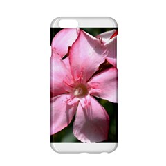 Pink Oleander Apple Iphone 6 Hardshell Case
