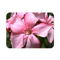 Pink Oleander Double Sided Flano Blanket (Mini)