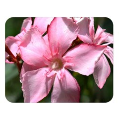 Pink Oleander Double Sided Flano Blanket (Large)