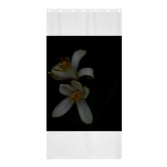 Lemon Blossom Shower Curtain 36  x 72  (Stall)