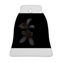 Lemon Blossom Ornament (Bell)