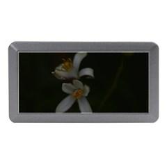 Lemon Blossom Memory Card Reader (mini)