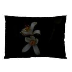 Lemon Blossom Pillow Cases (two Sides)