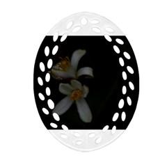 Lemon Blossom Oval Filigree Ornament (2 Side)