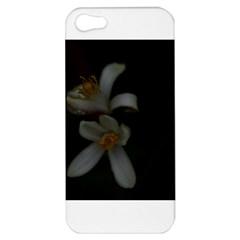Lemon Blossom Apple Iphone 5 Hardshell Case