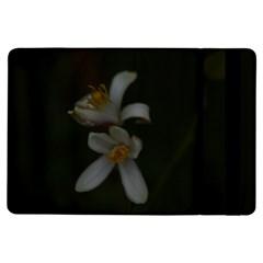 Lemon Blossom Ipad Air Flip