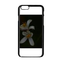 Lemon Blossom Apple iPhone 6 Black Enamel Case