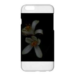 Lemon Blossom Apple iPhone 6 Plus Hardshell Case