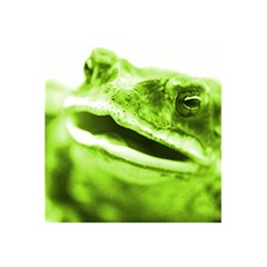 Green Frog 5 5  X 8 5  Notebooks