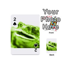 Green Frog Playing Cards 54 (Mini)