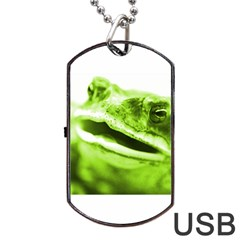 Green Frog Dog Tag USB Flash (One Side)
