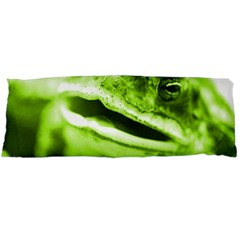 Green Frog Body Pillow Cases Dakimakura (Two Sides)