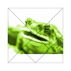 Green Frog Acrylic Tangram Puzzle (6  x 6 )