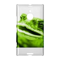 Green Frog Nokia Lumia 1520