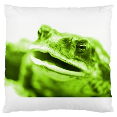 Green Frog Large Flano Cushion Cases (One Side)