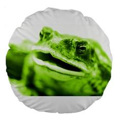 Green Frog Large 18  Premium Flano Round Cushions