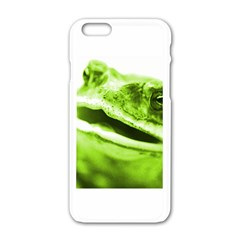 Green Frog Apple Iphone 6 White Enamel Case