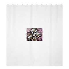 Gala Lilies Shower Curtain 66  x 72  (Large)