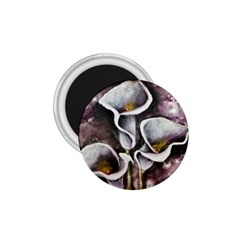 Gala Lilies 1 75  Magnets