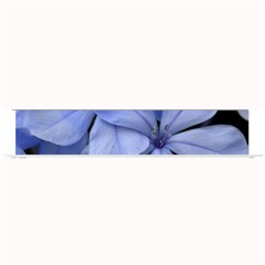 Bright Blue Flowers Small Bar Mats