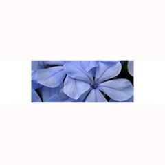 Bright Blue Flowers Large Bar Mats