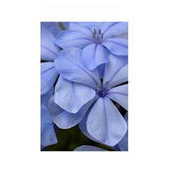Bright Blue Flowers Memory Card Reader