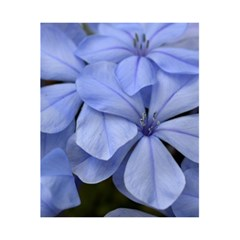 Bright Blue Flowers 5.5  x 8.5  Notebooks