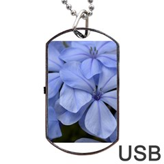 Bright Blue Flowers Dog Tag Usb Flash (one Side)