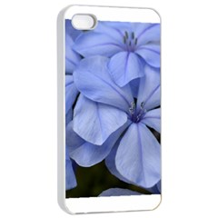 Bright Blue Flowers Apple Iphone 4/4s Seamless Case (white)