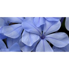 Bright Blue Flowers You Are Invited 3d Greeting Card (8x4)