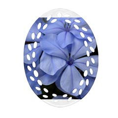 Bright Blue Flowers Oval Filigree Ornament (2-Side)