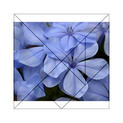 Bright Blue Flowers Acrylic Tangram Puzzle (6  x 6 )
