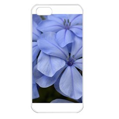 Bright Blue Flowers Apple Iphone 5 Seamless Case (white)