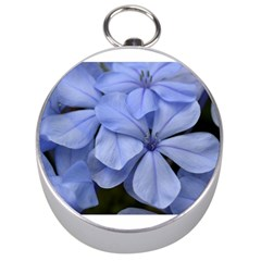 Bright Blue Flowers Silver Compasses