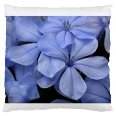 Bright Blue Flowers Standard Flano Cushion Cases (one Side)