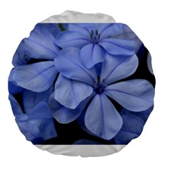 Bright Blue Flowers Large 18  Premium Flano Round Cushions