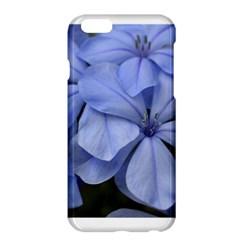 Bright Blue Flowers Apple Iphone 6 Plus Hardshell Case