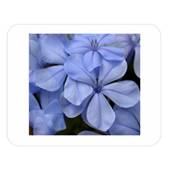Bright Blue Flowers Double Sided Flano Blanket (Large)