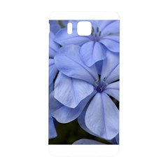 Bright Blue Flowers Samsung Galaxy Alpha Hardshell Back Case